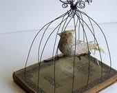 Bird in Bird Cage Vintage Book Mixed Media     Silent Reader