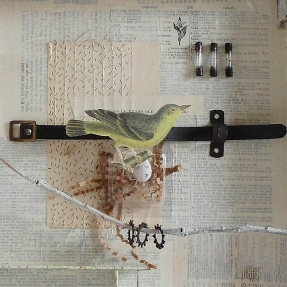 Assemblage of Nature - Joseph Cornell Tribute -Exploring Nature - Bird - Egg- Turtle Shell - Metal findings
