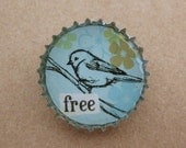 free bird bottlecap pin