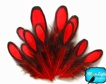 Laced Feathers, 1 Dozen - RED Laced Hen Saddle Loose Feather: 379