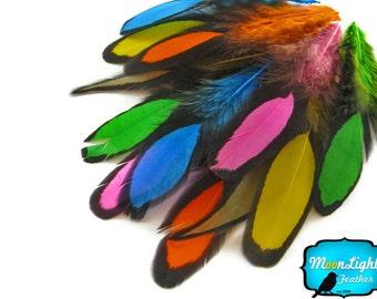 Rainbow Feathers, 1 Dozen - MULTICOLOR Laced Hen Saddle Loose Feather -love drop- : 1176