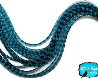 Hair Feathers, 6 Pieces - 6 Pieces - XL TURQUOISE BLUE Thin Grizzly Rooster Hair Extension Feathers : 457
