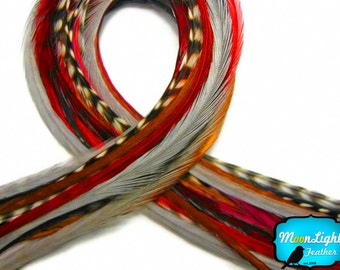 Red Hair feathers, 12 Strands - HOT MIX Thin Long Grizzly Rooster Hair Extension Feathers : 175