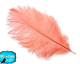 """Ostrich Feathers, 10 Pieces - PINK BLUSH Ostrich Plumes Dyed Drabs 6-8"""" : 1378"""