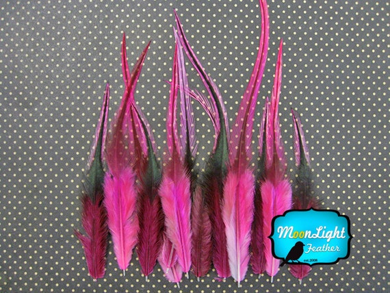 Rooster Feathers, 1 Dozen - SHORT HOT PINK Badger Rooster Feathers : 943