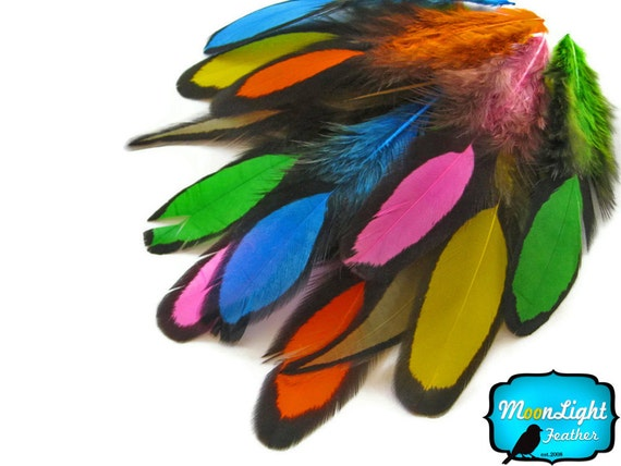 Rainbow Feathers, 1 Dozen - MULTICOLOR Laced Hen Loose Feather -love drop- : 1176