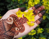 1.1 oz Fresh Mixed Henna Paste Cone - Natural, Safe, Body Art Quality
