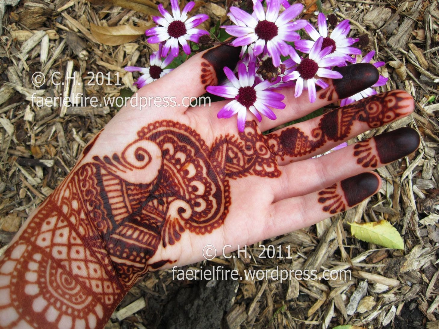 Party Mehndi Cone : Super deluxe henna party paste cones save