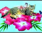 cat kitten collage photocollage asian woman blue pink art  home decor tagt team pet