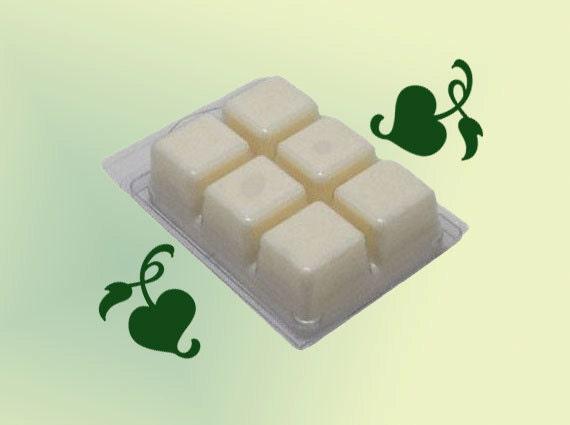 BERGAMOT Soy Wax Tarts 6 count Clamshell Dye Free Soy Melts