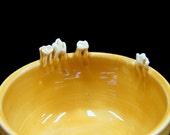 Teeth on Edge Bowl