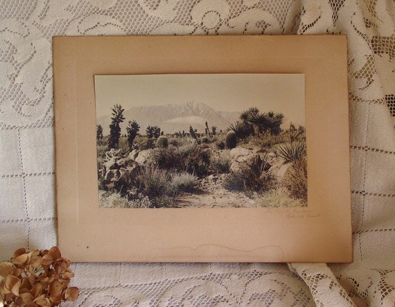 SALE - The Devils Garden Colorado Old Photograph Hand Colored Print