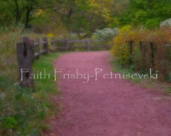 Follow the Path 8x10 Photograph