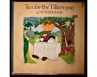 Glittered Cat Stevens Album