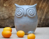 Owl home decor - blue spotted gray