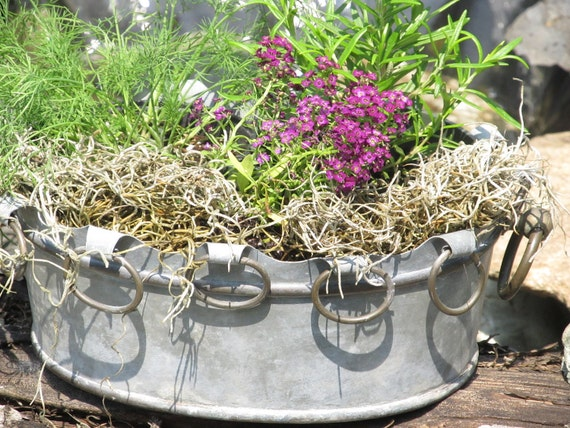 Galvanized Metal Planter - French Country Centerpiece - French Decor