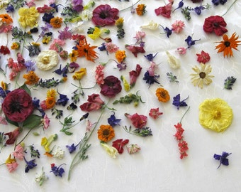 Dried Flowers, Wedding Confetti, Centerpieces, Real, Bridal, Table Decor, Wedding, Aisle Decorations, Real, Daisy, Pansy, 500 Dry Flowers