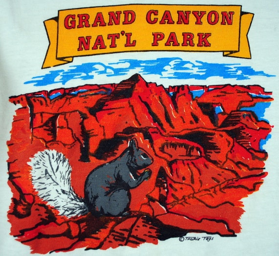 Vintage 1970s Grand Canyon National Park Kid's Tee Shirt