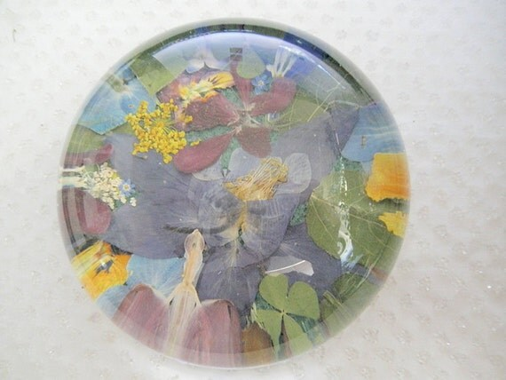 Colorado Summer-Sentimental Favorite Colorado Flowers and Aspen Leaves-Colorado Window Into The Garden Dome Glass Pressed Flower Paperweight