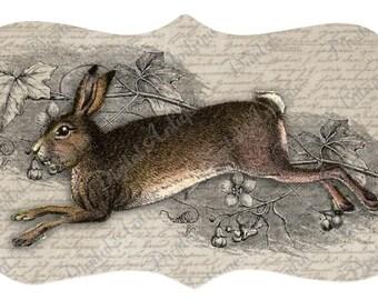 Vintage Rabbit Tags Printable Easter Digital Download