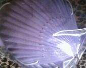 Emily Angelfish FABULOUS Ariel Purple and Lavender Colors Mermaid Sea Shell Bikini Top 4UR Tail SEASHELL