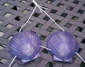 Emily Angelfish FABULOUS Dark Purple  Mermaid Sea Shell Bikini Top 4UR Tail SEASHELL