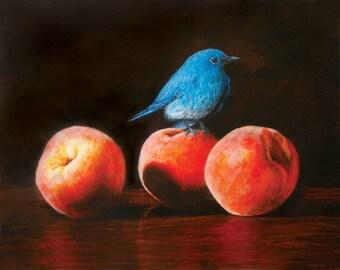 Bluebird and Peaches