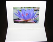 Photography - Purple Water Lily Photo Card