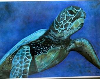 Sea Turtle - Original Pastel, Sea Turtle, Sea Turtle Artwork Framed