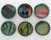 Set of 6 Recycled Bottle Cap Magnets - Butterflies