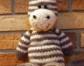 Mr. Zebra Jr.