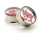 Embedded PINK Queen Anne's Lace Plugs gauges -5/8, 3/4, 7/8, 1 inch