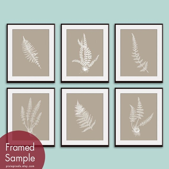 Ferns Garden Botanical Prints (Series J) Set of 6 - Art Prints (Featured in Truffle Brown and White) AS featured in BHG