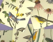 2 table tallies, Audubon birds, yellow background