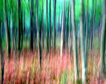 Abstract Art, Forest Trees, Nature Photography, Blue and Green, Fine Art Wall Hanging, Landscape Photography, Pastel, 16X20 Mat