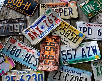 License Plates, Rustic Decor, States, Photography, 8X10 Mat, Wall Hanging,  Ready to Frame