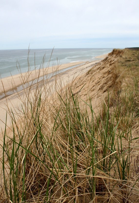 Cape Cod, Dune Grass, Landscape, Fine Art Photography, Seascape, 8X10 Mat, Sand and Water, Ready to Frame, Wall Art