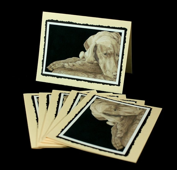 Note Cards, Weimaraner, Napping, Grey, Gray,  Weim, 6 cards