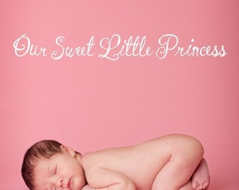 Vinyl Lettering Decal - Our sweet little princess-1315