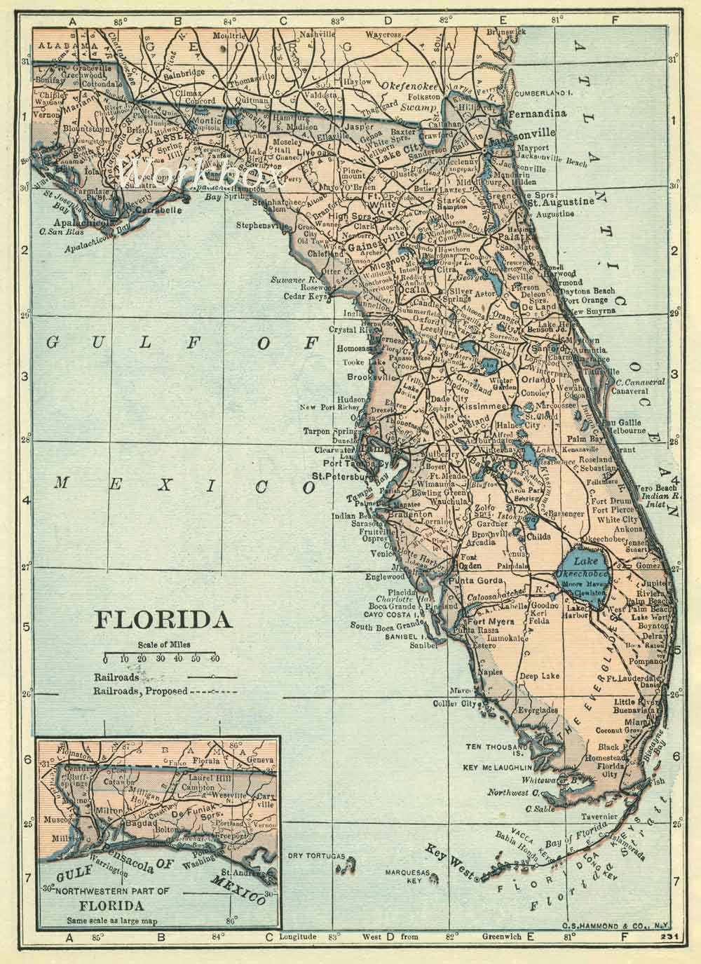 Florida State Map Etsy - Florida map picture