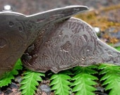 Charles Darwin pigeon skulls cufflinks
