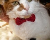 Cat Break Away BowTie Collar in Pinks and Red Hearts