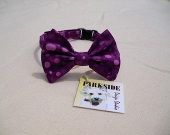 Cat Breakaway Bow Tie Collar Grape FIZZ