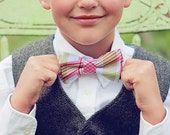The Beau- boy's picnic plaid in berry double stacked bow tie