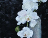 Orchid painting still life oil painting White Orchid 8x8 inch canvas original art by Judith Rhue
