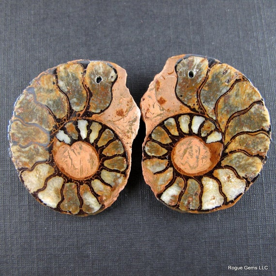 Moroccan Ammonite Fossil Bead Matched Pair