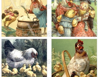 Vintage Hens - INSTANT DOWNLOAD -  8.5 x 11 inch Printable Digital Collage Sheet -  with 70 - 1 Inch Square Images