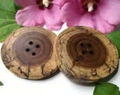 Reserved for Chesterone - Spalted Redbud Wood Tree Branch Buttons (Set of 2) - 2 5/8 x 2 1/2 inches, 4 holes, Great for Journals, Knitting