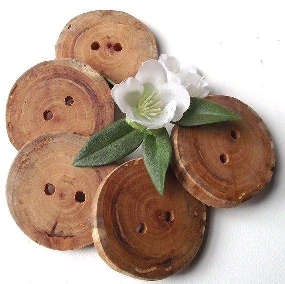 Rustic Willow Wood Tree Branch Buttons - 5 Wooden Buttons - 1 7/8 x 1 3/4 inches, Great for Journals, Pillows, Handbags, Knitting