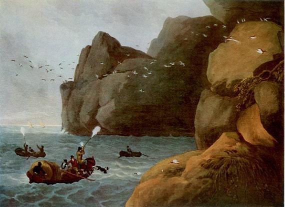 Puffin Shooting, Reproduction Antique Sporting Print, Hunting, Dog, Guns, Boats, Sea Birds, Storm Rocks,